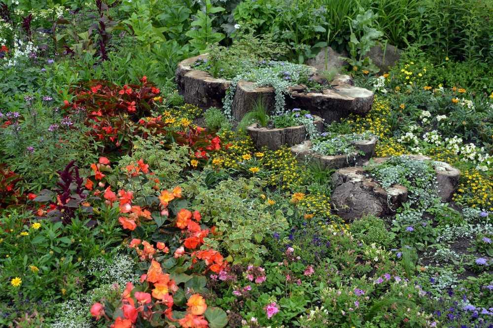 Den-Winter-nutzen-zur-Gartenplanung