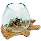 Gedeko Wurzel mit Glasvase Rund Ø ca.11-12 cm Glas Kugelvase Vase auf Holz Wurzelholz (Wurzel 15-20 cm)