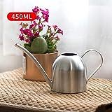 Kathariiy 450 ml Edelstahl-Gießkanne - Metall-Gießkanne für Home-Office-Gartenpflanzen