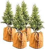 Royal Gardineer Winterschutz: 4er-Set Thermo-Topfschutze für Pflanzen, 50 x 45 cm (Winterschutz Kübelpflanzensäcke)