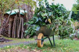 Gartenarbeit-im-Herbst-Der-Garten-vor-dem-Winterschlaf