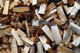 Was-Sie-ueber-Brennholz-wissen-sollten