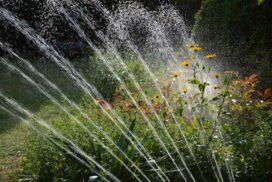 Gartenbewaesserung-Was-ist-sinnvoll